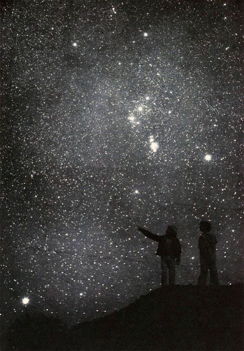 childrenLookingAtNightSky
